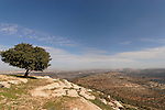 A view of Samaria from Beth El mountains