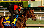 October 27, 2019 : Breeders' Cup Classic entrant McKinzie, trained by Bob Baffert, exercises in preparation for the Breeders' Cup World Championships at Santa Anita Park in Arcadia, California on October 27, 2019. John Voorhees/Eclipse Sportswire/Breeders' Cup/CSM
