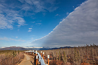 Trans Alaska Oil pipeline traverses Alaska's tundra.
