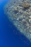 Vertical drop off of over 2000m, Shark Cave, Layang Layang atoll, Sabah, Borneo, Malaysia, South China Sea, Pacific Ocean