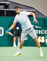 11-02-13, Tennis, Rotterdam, ABNAMROWTT,, Grigor Dimitrov