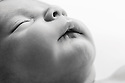Sam Sh Newborn Session