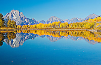 Ox Bow Bend in fall with bright foliage and photographer with tripod  on shore