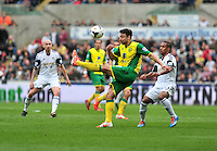 Swansea v Norwich, Liberty Stadium, Saturday 29th march 2014...