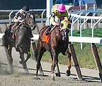 September 27, 2014: Belle Gallantey, ridden by Jose Ortiz, wins the Beldame Stakes (a Breeders' Cup Win and You're In Race) on Jockey Club Gold Cup Day at Belmont Park Race Track in Elmont, New York. John Voorhees/ESW/CSM