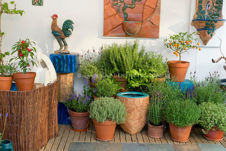 Pretty variety of pots and container garden of herbs, vegetables, citrus, with garden ornaments and fountain on deck