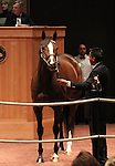 Hip 36 C C's Pal consigned by Vinery Sales, sold for $240,000..November 05, 2012.