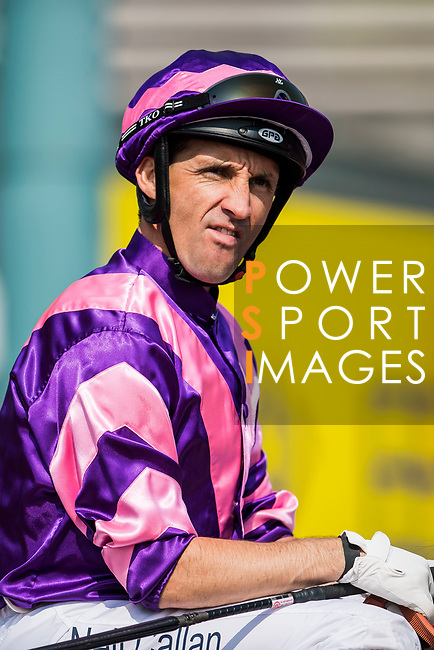 Jockey Neil Callan riding Dundonnell competes in the Race 3, Flying Dancer Handicap, during the Longines Hong Kong International Races at Sha Tin Racecourse on December 10 2017, in Hong Kong, Hong Kong. Photo by Victor Fraile / Power Sport Images