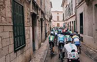peloton rolling out of town (in Lloseta)<br /> <br /> Trofeo Lloseta - Andratx: 140km<br /> 27th Challenge Ciclista Mallorca 2018