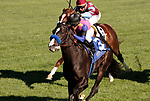 LEXINGTON, KY - APRIL 07: #3 Big Score and jockey Javier Castellano win the 29th running of The Transylvania Presented by Keeneland Select (Grade 3) $150,000 for owner George Krikorian and train Tim Yakteen at Keeneland Race Course.  April 07, 2017, Lexington, Kentucky. (Photo by Candice Chavez/Eclipse Sportswire/Getty Images)