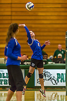 1 November 2015: Yeshiva University Maccabee Outside Hitter, Setter, and team co-Captain Shana Wolfstein, a Senior from Burlington, VT, hits one during game action against the Old Westbury Panthers at SUNY Old Westbury in Old Westbury, NY. The Panthers edged out the Maccabees 3-2 in NCAA women's volleyball, Skyline Division play. Mandatory Credit: Ed Wolfstein Photo *** RAW (NEF) Image File Available ***