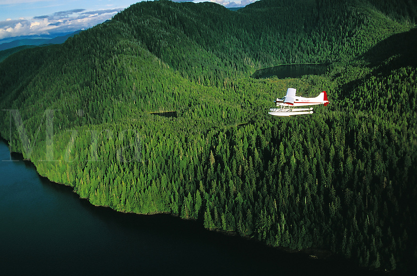Aerial view of a plane on a sightseeing tour. Alaska.