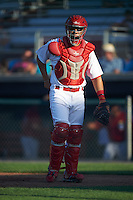 Auburn Doubledays catcher Tres Barrera (15) during a game against the Mahoning Valley Scrappers on July 17, 2016 at Falcon Park in Auburn, New York.  Mahoning Valley defeated Auburn 3-2.  (Mike Janes/Four Seam Images)