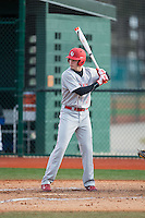 Jamie Smith (3) of the Cornell Big Red at bat against the Seton Hall Pirates at The Ripken Experience on February 27, 2015 in Myrtle Beach, South Carolina.  The Pirates defeated the Big Red 3-0.  (Brian Westerholt/Four Seam Images)