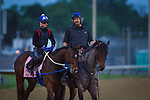 LOUISVILLE, KY - MAY 04: Terra Promessa on track in preparation for the Kentucky Oaks at Churchill Downs on May 04, 2016 in Louisville, Kentucky. (Photo by Zoe Metz/Eclipse Sportswire/Getty Images)