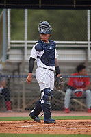 GCL Yankees East catcher Hemmanuel Rosario (7) during a Gulf Coast League game against the GCL Phillies West on July 26, 2019 at the New York Yankees Minor League Complex in Tampa, Florida.  (Mike Janes/Four Seam Images)