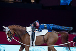 Vaulter Lukas Heppler  and his horse Monaco Franze during Madrid Horse Week at Ifema in Madrid, Spain. November 26, 2017. (ALTERPHOTOS/Borja B.Hojas)