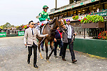 """Oct 06, 2019 : Sistercharlie with John Velazquez, wins the $500,000 Grade I Flower Bowl  Stakes, a """"Win and You're In""""  for fillies & mares on the turf, at Belmont Park, in Elmont, NY, October 06, 2019. Sue Kawczynski_ESW_CSM,"""