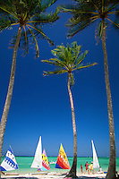 Dominican Republic, Punta Cana, Bavaro Beach, scene of plam trees, sailboats and Caribbean Sea