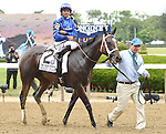 Wedding Toast (no. 2), ridden by Jose Lezcano and trained by Kiaran McLaughlin, wins the 47th running of the grade 1 Ogden Phipps Stakes for fillies and mares four years old and upward on June 06, 2015 at Belmont Park in Elmont, New York. (Bob Mayberger/Eclipse Sportswire)