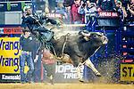 2016 Pro Bull Riding