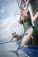 Pêche au thon à la canne au Pays-Basque