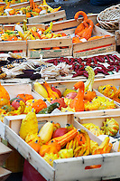 Colourful pumpkins yellow green and orange for sale at a market stall at the street market in Bergerac Dordogne France