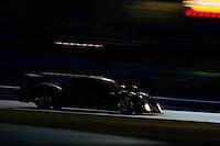 #95 Crown Royal-NPN Racing BMW/Riley of Christophe Bouchut, Ryan Hunter-Reay, Lucas Luhr, Scott Tucker and Richard Westbrook
