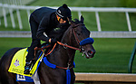 LOUISVILLE, KY - MAY 02: Instilled Regard works out on the track in preparation for the Kentucky Derby at Churchill Downs on May 2, 2018 in Louisville, Kentucky. (Photo by John Vorhees/Eclipse Sportswire/Getty Images)