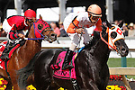 May 16, 2014: Ben's Cat, Julien Pimentel up, wins the Jim McKay Turf Sprint (which was moved to the dirt) at Pimlico Race Course in Baltimore, MD. ©Joan Fairman Kanes/ESW/CSMMay 16, 2014: Ben's Cat, Julien Pimentel up, wins the Jim McKay Turf Sprint (which was moved to the dirt) at Pimlico Race Course in Baltimore, MD. ©Joan Fairman Kanes/ESW/CSM