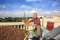 "On June 4, 2009, Nicolas Géant set up a hive on the roof of the Grand Palais in Paris. ""I have about 150 hives to the west of Paris, one at Vuitton's at the Pont Neuf bridge and today two on the roof of the Grand Palais. My objective in setting up these hives right in the heart of Paris is to point my finger at this paradox: the bee in the city does very well while those of the fields - not the county - do very badly. That shows that there are presently problems. So I looked for a mythical spot in Paris, I wanted it to be near the Champs-Elysées, which everyone knows, from New York to Tokyo."""