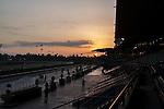 OCT 27 2014:Sunrise  at Santa Anita Race Course in Arcadia, California on October 27, 2014. Kazushi Ishida/ESW/CSM