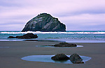Bandon Beach and Bandon State Park, accessed from Beach Loop Drive are highlighted by sea stacks and Face Rock, a mystery being in repose.