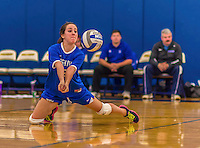 26 October 2014: Yeshiva University Maccabee Outside Hitter Eliana Levy, a Junior from Houston Texas, in action against the Maritime College Privateers, at the College of Mount Saint Vincent, in Riverdale, NY. The Privateers defeated the Maccabees 3-0 in the NCAA Division III Women's Volleyball Skyline matchup. Mandatory Credit: Ed Wolfstein Photo *** RAW (NEF) Image File Available ***