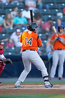 Rossmel Perez (14) of the Bowie Baysox at bat against the Richmond Flying Squirrels at The Diamond on May 23, 2015 in Richmond, Virginia.  The Baysox defeated the Flying Squirrels 3-2.  (Brian Westerholt/Four Seam Images)