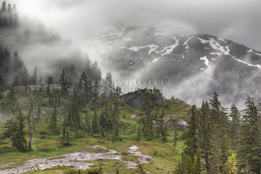 Forest and misty mountains. Prince William Sound. Alaska. U.S.A.