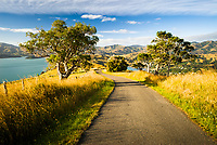 Lighthouse Road near Akaroa, Banks Peninsula, Christchurch, New Zealand