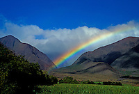 Sugar cane fields and the West Maui Mountains with a rainbow at Ukumehame, Maui.