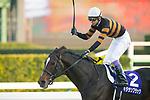 FUNABASHI,JAPAN-DECEMBER 24: Kitasan Black #2,ridden by Yutaka Take,wins the Arima Kinen at Nakayama Racecourse on December 24,2017 in Funabashi,Chiba,Japan (Photo by Kaz Ishida/Eclipse Sportswire/Getty Images)
