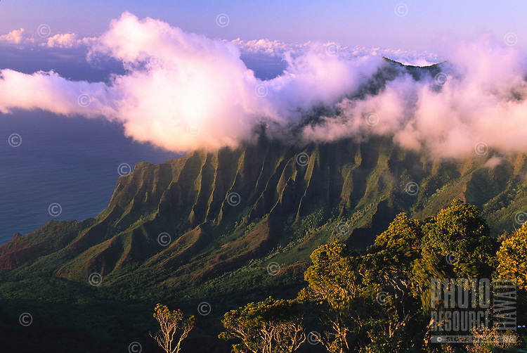 Looking into the Kalalau Valley from the viewpoint at Kokee to the Na Pali Coast of the north shore of the island of Kauai