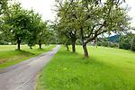 Europa, DEU, Deutschland, Baden-Wuerttemberg, Mainhardter Wald, Großerlach, Typische Landschaft, Baeume, Natur, Umwelt, Landschaft, Jahreszeiten, Stimmungen, Landschaftsfotografie, Landschaften, Landschaftsphoto, Landschaftsphotographie, <br /> <br /> [Fuer die Nutzung gelten die jeweils gueltigen Allgemeinen Liefer-und Geschaeftsbedingungen. Nutzung nur gegen Verwendungsmeldung und Nachweis. Download der AGB unter http://www.image-box.com oder werden auf Anfrage zugesendet. Freigabe ist vorher erforderlich. Jede Nutzung des Fotos ist honorarpflichtig gemaess derzeit gueltiger MFM Liste - Kontakt, Uwe Schmid-Fotografie, Duisburg, Tel. (+49).2065.677997, ..archiv@image-box.com, www.image-box.com]