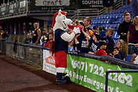 Binghamton Rumble Ponies mascot Rowdy the Pony interacts with the crowd during a game against the Portland Sea Dogs on August 31, 2018 at NYSEG Stadium in Binghamton, New York.  Portland defeated Binghamton 4-1.  (Mike Janes/Four Seam Images)