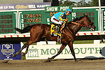 August 02 2015: American Pharoah with Victor Espinoza win the $1,750,000 Grade I Haskell Invitational  Stakes for 3-year olds, going 1 1/8 mile at Monmouth Park.  Trainer Bob Baffert. Owner Zayat Stables . Sue Kawczynski/ESW/CSM