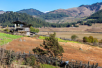 Phobjikha, Bhutan.  Valley Scenes, Farmland and Settlements.  Typical Rural farmhouse in Foreground.