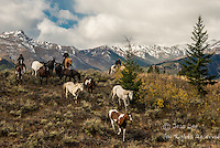 bringing em down Cowboys working and playing. Cowboy Cowboy Photo Cowboy, Cowboy and Cowgirl photographs of western ranches working with horses and cattle by western cowboy photographer Jess Lee. Photographing ranches big and small in Wyoming,Montana,Idaho,Oregon,Colorado,Nevada,Arizona,Utah,New Mexico. Fine Art Limited Edition Photography Of American Cowboys and Cowgirls by Jess Lee