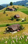 CHE, SCHWEIZ, Kanton Bern, Emmental: Landschaft und Bauernhoefe bei Schangnau | CHE, Switzerland, Bern Canton, Valley Emmental: landscape and farmhouses near Schangnau
