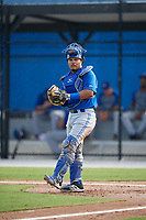 Toronto Blue Jays catcher Yorman Rodriguez (50) during an Instructional League game against the Philadelphia Phillies on October 7, 2017 at the Englebert Complex in Dunedin, Florida.  (Mike Janes/Four Seam Images)