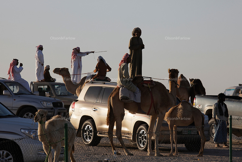 Bedouins stand on their cars to try to view the judging of the Camel Beauty contest. Cars that will be prizes for winning camels line the parking area outside the camel contest.  Often the camel owners are so wealthy that they keep the plaque but give the car to the camel trainer.
