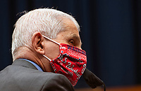 Dr. Anthony Fauci, Director of the National Institute for Allergy and Infectious Diseases, National Institutes of Health, wears his Washington Nationals mask as he testifies during a US House Energy and Commerce Committee hearing on the Trump Administration's Response to the COVID-19 Pandemic, on Capitol Hill in Washington, DC on Tuesday, June 23, 2020. <br /> Credit: Kevin Dietsch / Pool via CNP/AdMedia