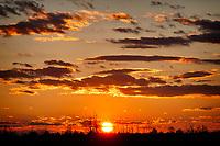 Sunset on Pocosin